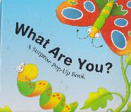 What Are You? A Surprise Pop-Up Book